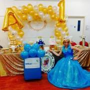 Cinderella Themed Kids Party
