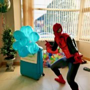 Spiderman Children's Birthday Party