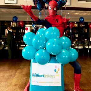 Spiderman Lookalike Party