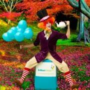 Mad Hatter Wonderland Party Mad Hatter Themed Party Entertainer London
