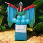 Parrot Wildlife Party Wildlife Parrot Children's Entertainer London