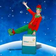 Christmas Elf Children's Entertainer London