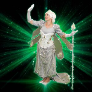 Silver Fairy Themed Kids Party